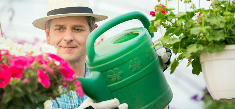 Man watering flowering plants