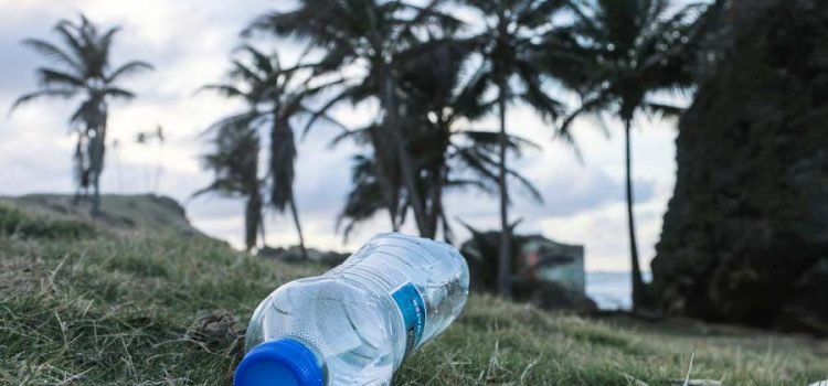 Plastic water bottle on a tropical beach
